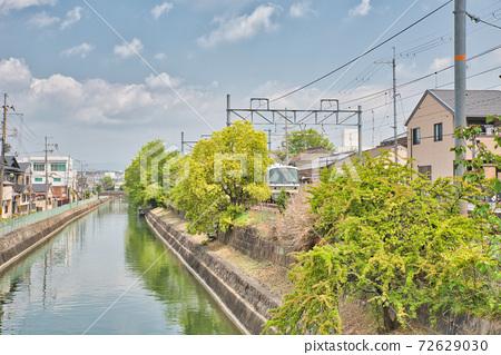 [京都府] 5月新綠季節伏見稻荷大社的近景 72629030