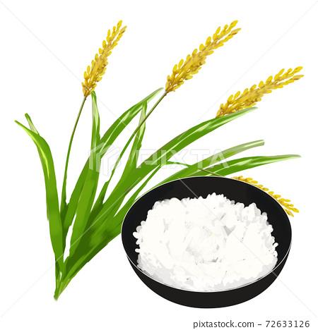 米飯和白米飯 72633126