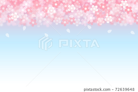 Cherry blossom background illustration petal cherry spring illustration material 72639648