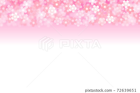 Cherry blossom background illustration petal cherry spring illustration material 72639651
