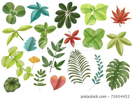 세련된 색조의 리프 식물 세트 선화 없음 벡터 소재 72654452