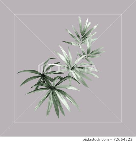 色彩豐富的花卉素材組合和設計元素 72664522