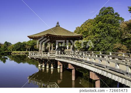 奈良縣奈良市Ukimido Sagiike奈良公園 72665473