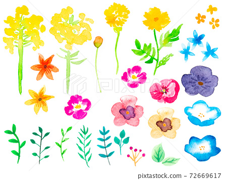 Various watercolor flowers 72669617