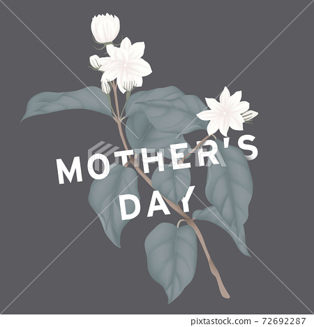 Happy mother's day greeting card design, minimalist white jasmine flowers with leaves on dark grey 72692287