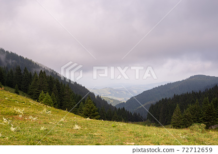 Landscape with hills 72712659
