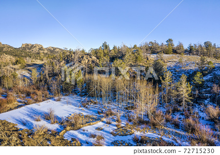 aspen grove in winter scenery - aerial view 72715230