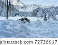 Snowman 72728917