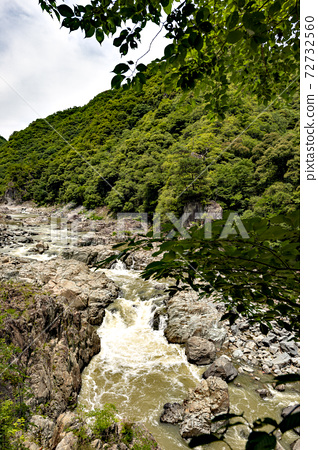 11 월 효고현의 나마세 조치 武田尾 사이의 구 쿠치 야마 선 폐선 등산로의 풍경 72732560