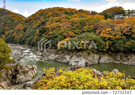 11 월 효고현의 나마세 조치 武田尾 사이의 구 쿠치 야마 선 폐선 등산로의 풍경 72732587