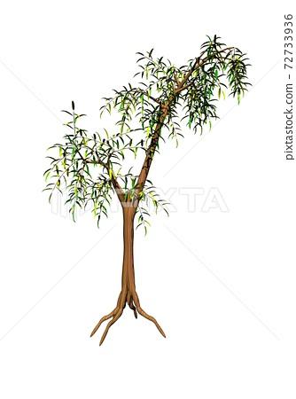 Bamboo tree - 3D render 72733936