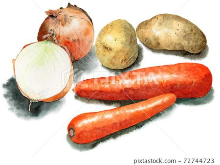 模擬水彩咖哩蔬菜胡蘿蔔土豆洋蔥 72744723