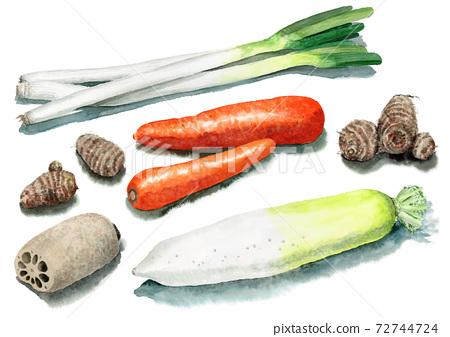 5種模擬水彩根菜類 72744724