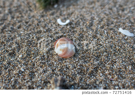 海邊,海浪,北海岸,沙子,貝殼,風浪,海灘 72751416