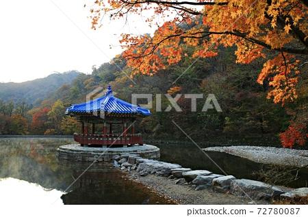가을여행,가을풍경,국립공원 72780087