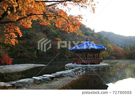 가을여행,가을풍경,국립공원 72780088