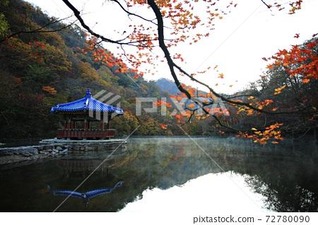가을여행,가을풍경,국립공원 72780090