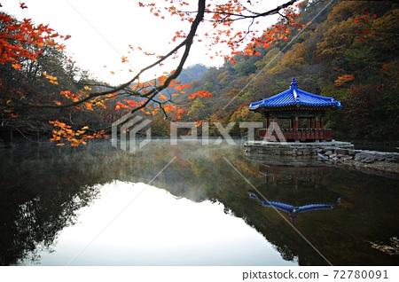 가을여행,가을풍경,국립공원 72780091