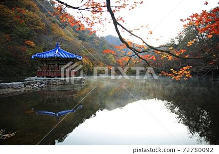가을여행,가을풍경,국립공원 72780092