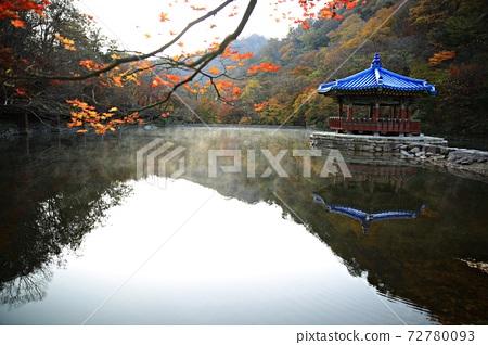가을여행,가을풍경,국립공원 72780093