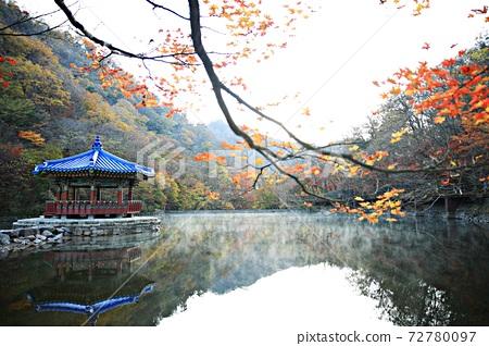 가을여행,가을풍경,국립공원 72780097