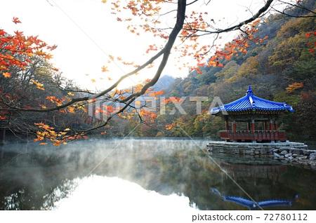 가을여행,가을풍경,국립공원 72780112