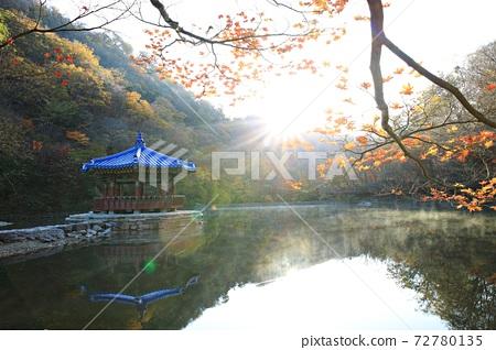 가을여행,가을풍경,국립공원 72780135