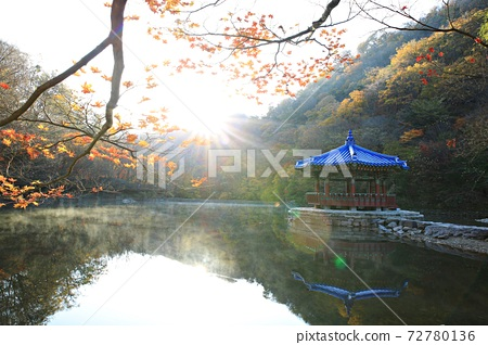 가을여행,가을풍경,국립공원 72780136