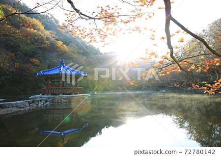 가을여행,가을풍경,국립공원 72780142
