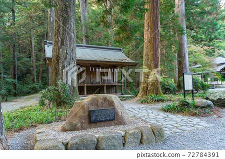 [Shizuoka Prefecture] Okuni Shrine 72784391