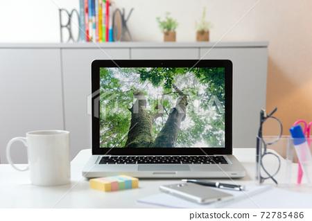 在線遊覽筆記本電腦森林樹屏幕 72785486