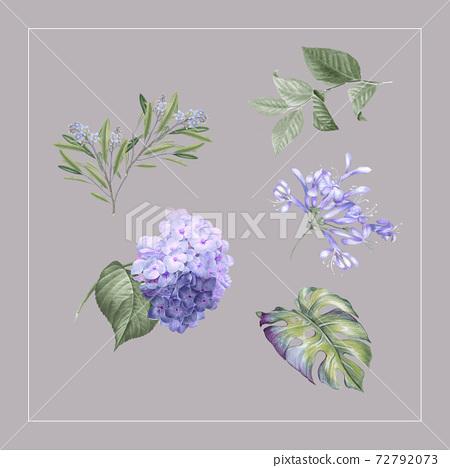 色彩豐富的花卉素材組合和設計元素 72792073