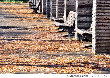 낙엽 위에 긴 그림자가 비쳐 드는 공원 휴게소 72830035