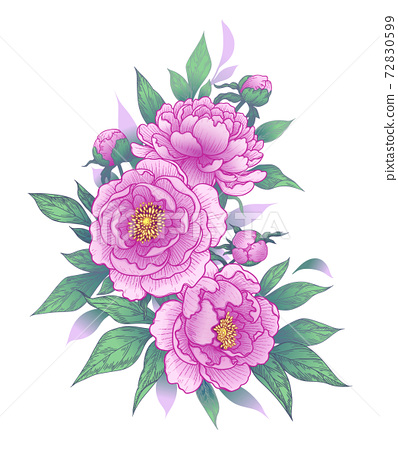 Hand Drawn Floral Bunch with Pink Peony Flowers 72830599