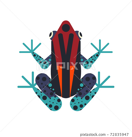 Tropical Poison Geometric Frog in Flat Design 72835947