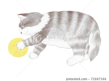 공놀이 하는 아기 고양이 72887388