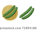 黃瓜的例證 72894186