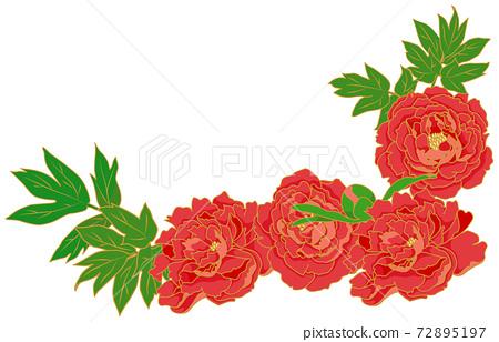 牡丹花的物質插圖 72895197