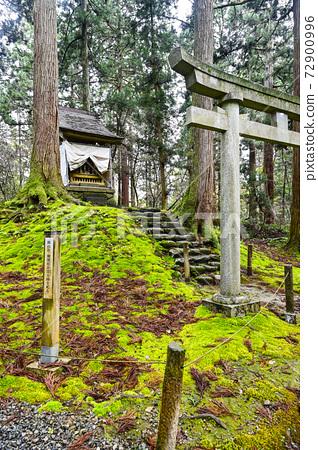 이끼 낀 平泉寺 하쿠산 신사의 경내 개산 사 (후쿠이 현 가쓰 야마시) 72900996