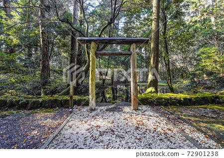 이끼 낀 平泉寺 하쿠산 신사 미타라이 연못 (후쿠이 현 가쓰 야마시) 72901238