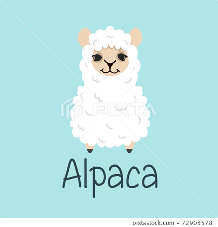 hand drawn Cute alpaca vector 72903578