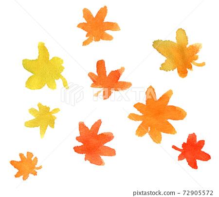가을의 단풍 : 단풍의 잎의 수채화 일러스트 72905572