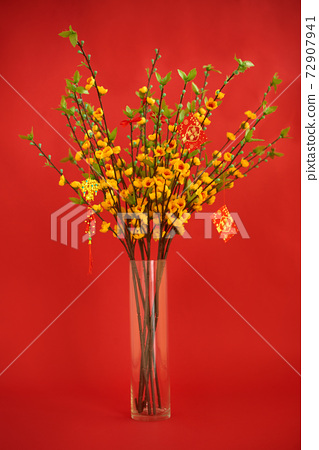 Blooming apricot branches for Tet 72907941