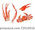 用彩色的鉛筆和水彩畫的螃蟹零件 72910916