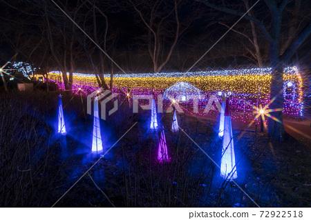 船岡 성지 공원의 일루미네이션 Shibata Fantasy Illumination 2020 72922518
