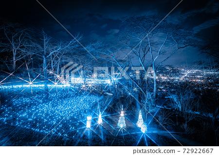船岡 성지 공원의 일루미네이션 Shibata Fantasy Illumination 2020 72922667