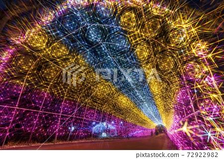 船岡 성지 공원의 일루미네이션 Shibata Fantasy Illumination 2020 72922982