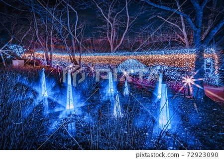 船岡 성지 공원의 일루미네이션 Shibata Fantasy Illumination 2020 72923090