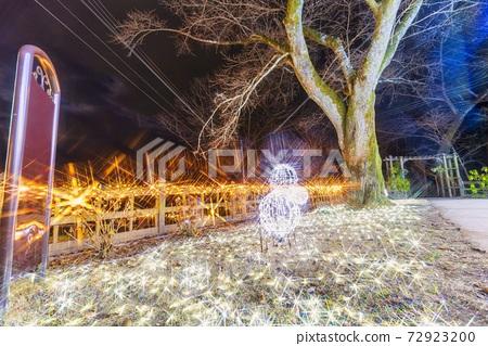 船岡 성지 공원의 일루미네이션 Shibata Fantasy Illumination 2020 72923200