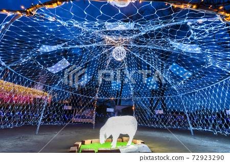 船岡 성지 공원의 일루미네이션 Shibata Fantasy Illumination 2020 72923290